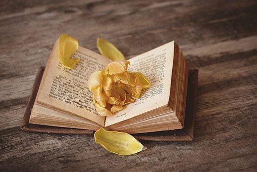 本, オープン, 登板, 本のページ, ページ, フォント, 花, 黄橙色