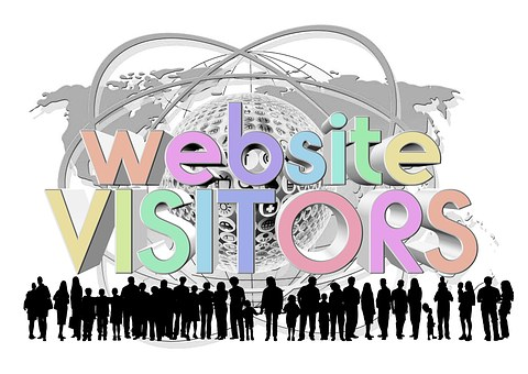 Website Visitors Personal Users Log Counte