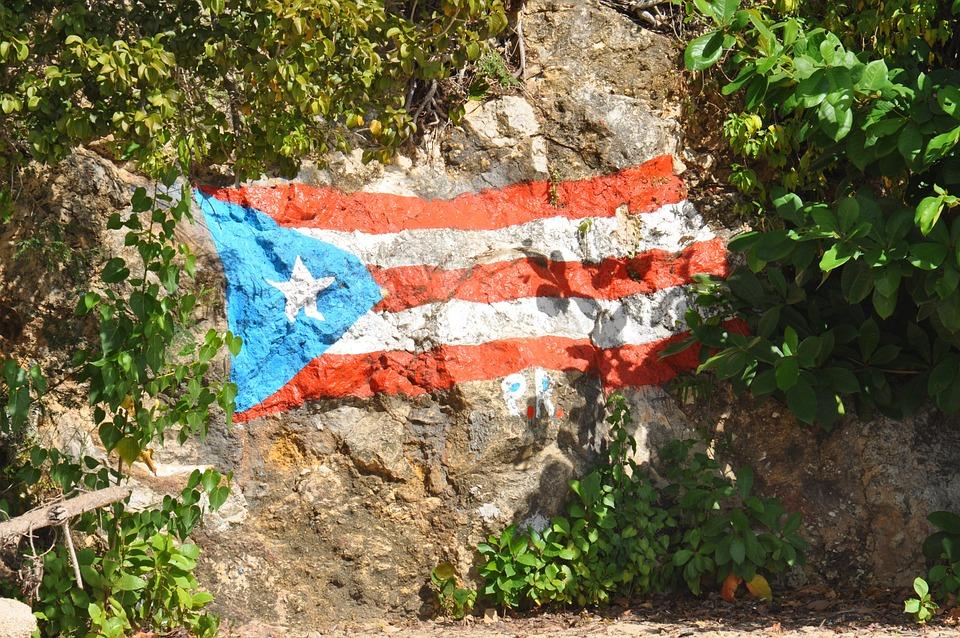 Portoryko, Góra, Skalna Ściana, Zaznacz, Krzewy
