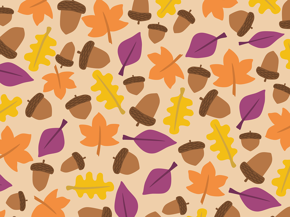 Acorn, Autumn, Background, Boxes, Fall, Leaf, Leaves