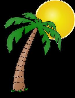 Afbeeldingsresultaat voor palmboom en zon tekening