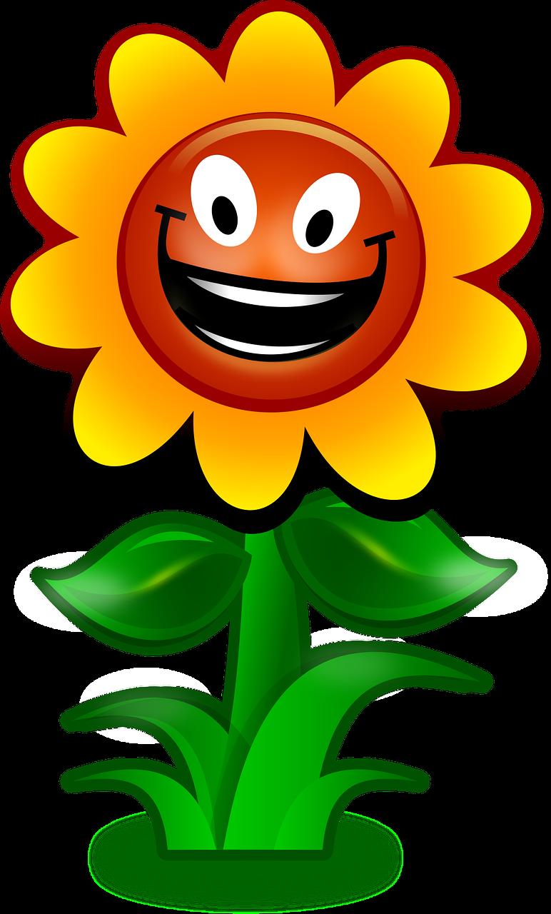 Веселый цветок картинки
