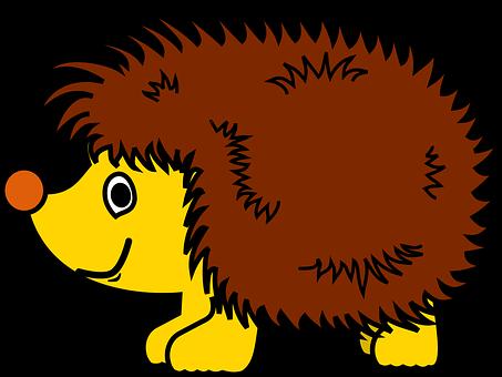 Hedgehog Obrazky Pixabay Stahuj Obrazky Zdarma