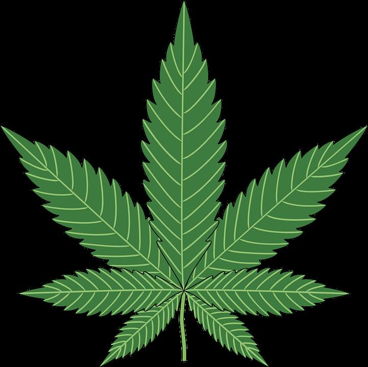 baking cannabis hemp free vector graphic on pixabay rh pixabay com hemp leaf vector free download ganja leaf vector