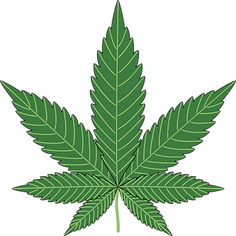 The Best Logo Daun Ganja Vector