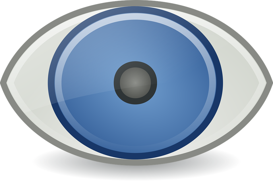 Eye Icons Rodentia Free Vector Graphic On Pixabay