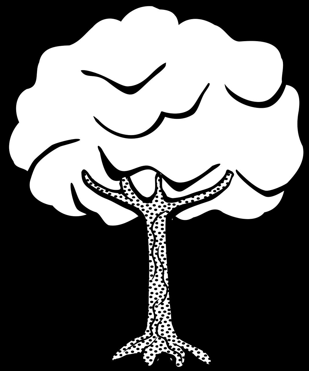 Дерево контур картинка