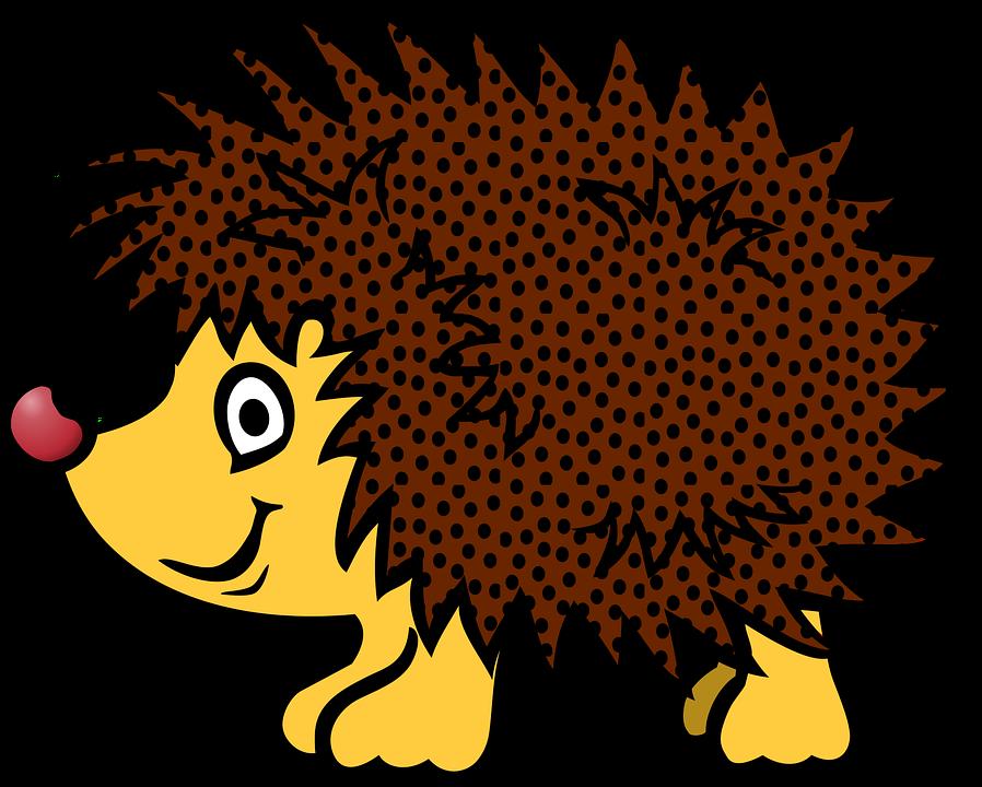 Jezek Zvire Kresleny Vektorova Grafika Zdarma Na Pixabay