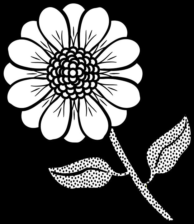 Flora Flor Planta Plantillas Para · Gráficos vectoriales gratis en ...