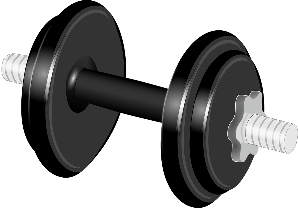 Gym equipment weights png pixshark images