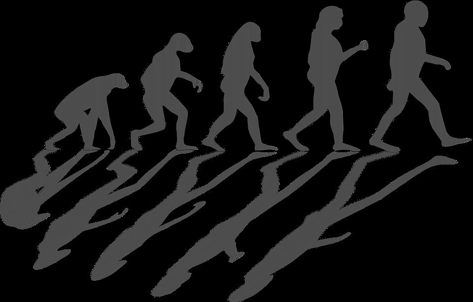 evolution evolving mankind men ape