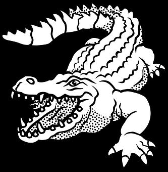 200 Free Lizard Dinosaur Vectors Pixabay