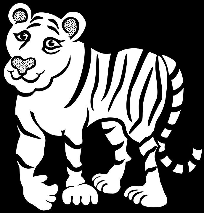 820 Koleksi Gambar Hewan Kucing Tanpa Warna Terbaik