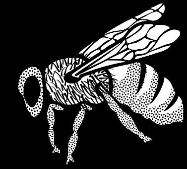 Lebah Gambar Vektor Unduh Gambar Gratis Pixabay