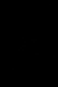 Merpati Gambar Vektor Unduh Gambar Gratis Pixabay