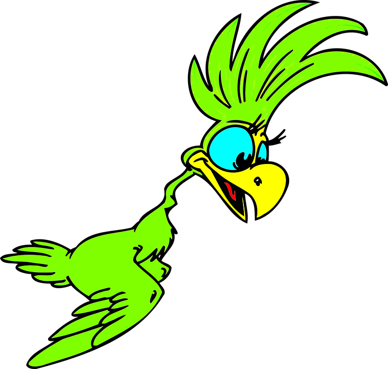 Cartoon parrot flying - photo#21