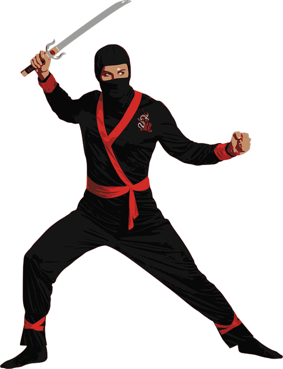 ninja free images on pixabay