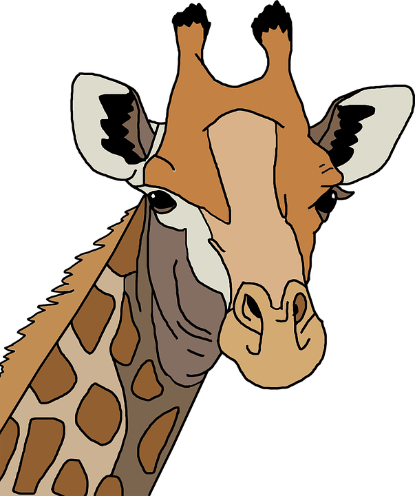 Free Vector Graphic: Africa, Animal, Colorful, Giraffe