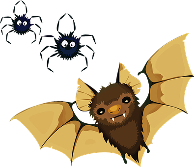 Animals, Bat, Decoration, Halloween