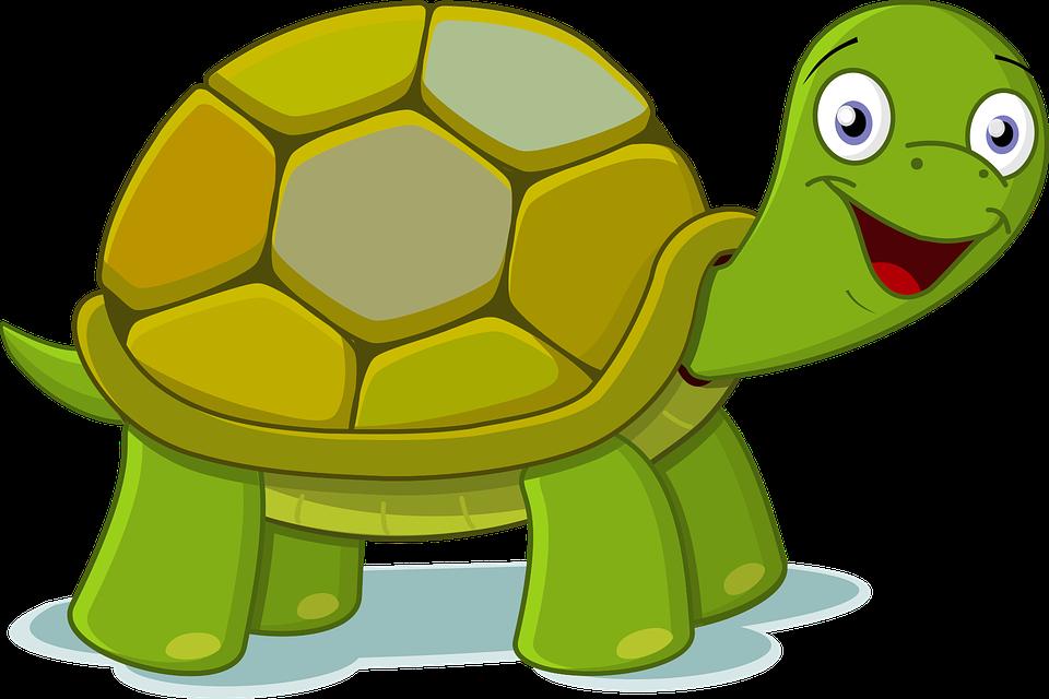 Zwierzęta, Edukacyjny Film Animowany, Zielony