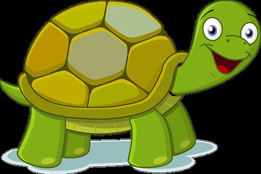 动物, 卡通, 绿色, 快乐, 高质量, 乌龟, 托尔图加, 龟, 佛得角