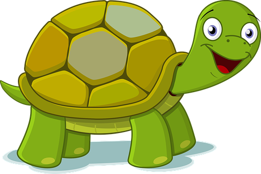 100 Free Tortoise Turtle Illustrations Pixabay