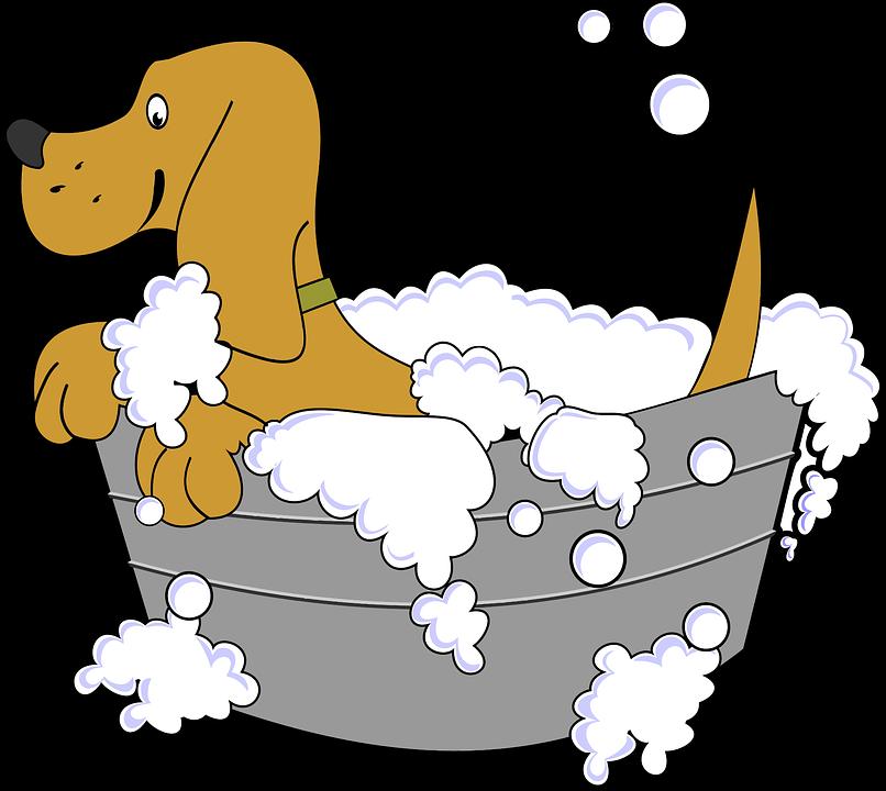 Dyr Bad Hunde - Gratis vektor grafik på Pixabay