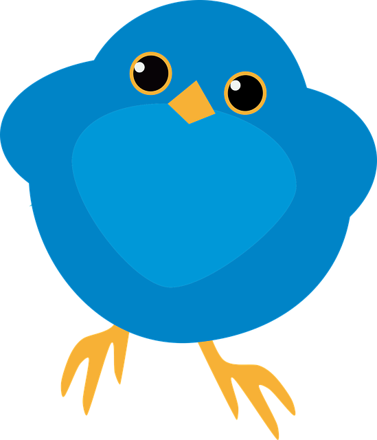 Animal Bluebird Cartoon 183 Free Vector Graphic On Pixabay