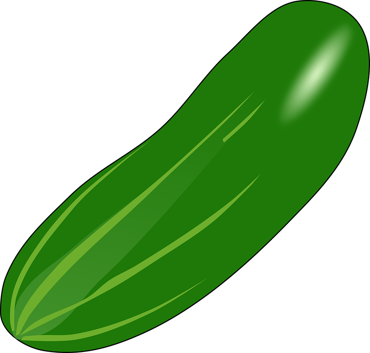 cucumber eat edible  u00b7 free vector graphic on pixabay cucumber clip art free cucumber clip art free