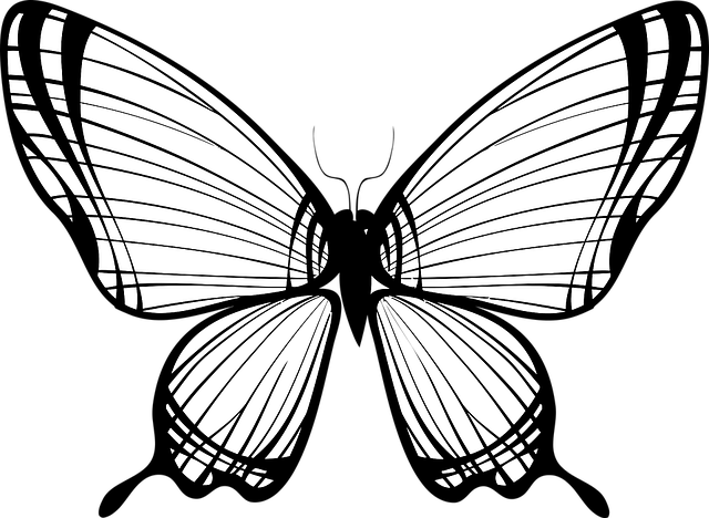 Animal Butterfly Flying 183 Free Vector Graphic On Pixabay