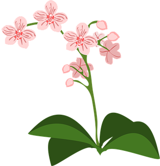 Clip Art Flor Flora Flower Nature Orc