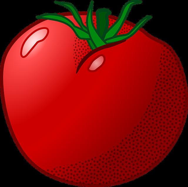 plant tomato 183 free vector graphic on pixabay
