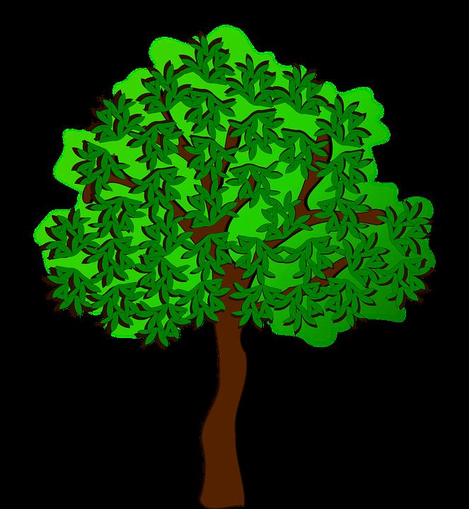 Image vectorielle gratuite: Clipart, Flore, Nature, Plantes - Image ...