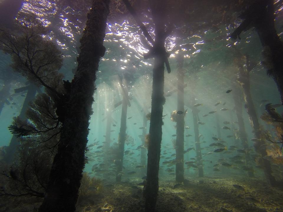 underwater ground