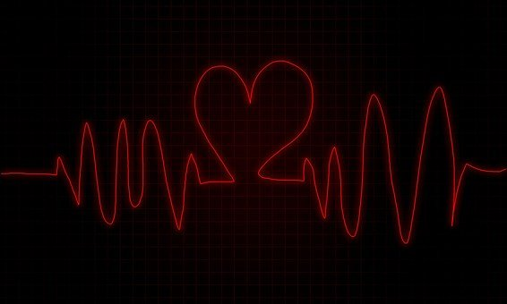 Monitor, Heart, Beat, Heart Beat