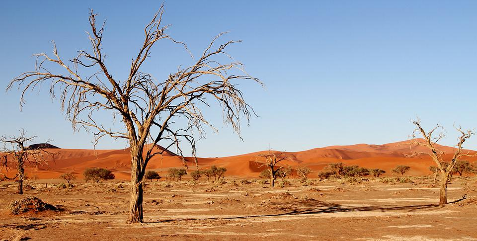 Désert, Namibie, Dunes, Afrique, Dune De Sable