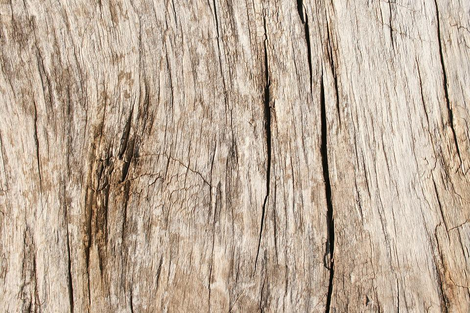 Wood Grain Texture free photo: wood, grain, texture, panel, timber - free image on