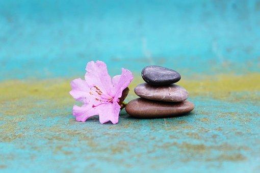 Azalea, Stone Pile, Stack, Stones