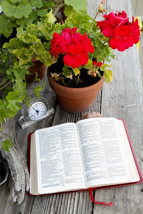 Bible Livre Ouvert Ouverte 183 Photo Gratuite Sur Pixabay