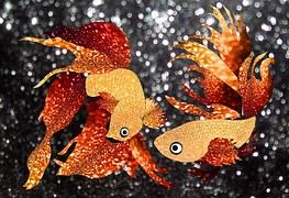 Photo gratuite poisson rouge poissons d 39 eau douce for Paillette poisson