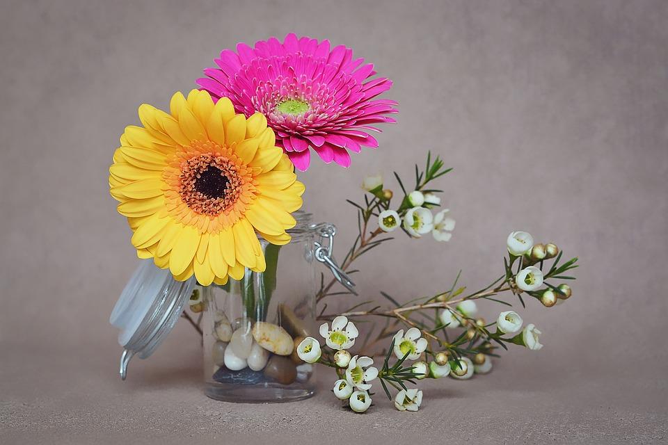 Gerbera flowers pink free photo on pixabay gerbera flowers pink yellow spring flowers mightylinksfo