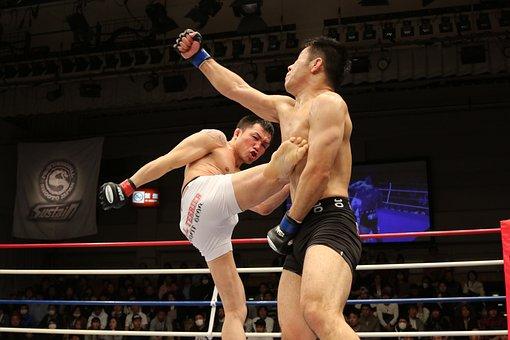 Mixed Martial Arts, Sport, Kick, Shooto