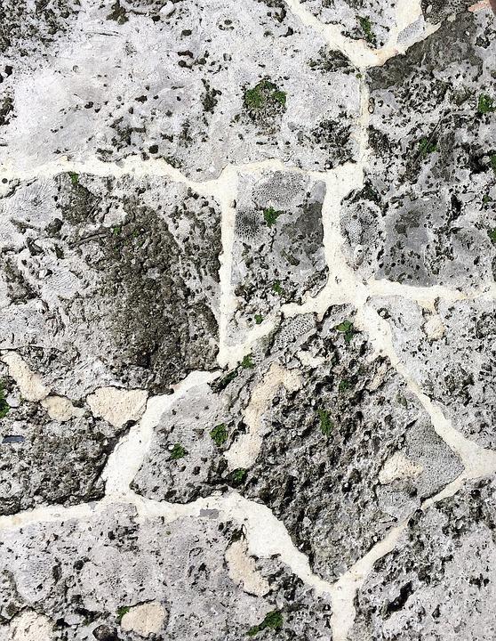 Coquina Shell Limestone - Free...