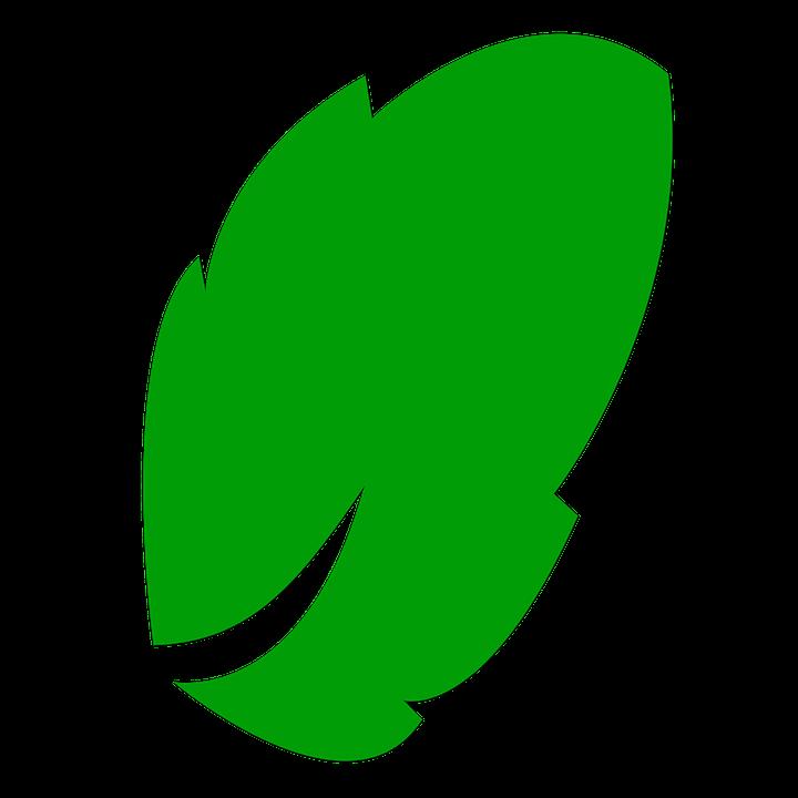 Icone Feuille Vert Image Gratuite Sur Pixabay