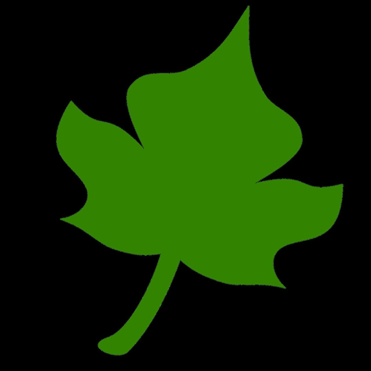 плюсы зеленые листья картинки для оформления распечатать и вырезать оригинальная подача одного