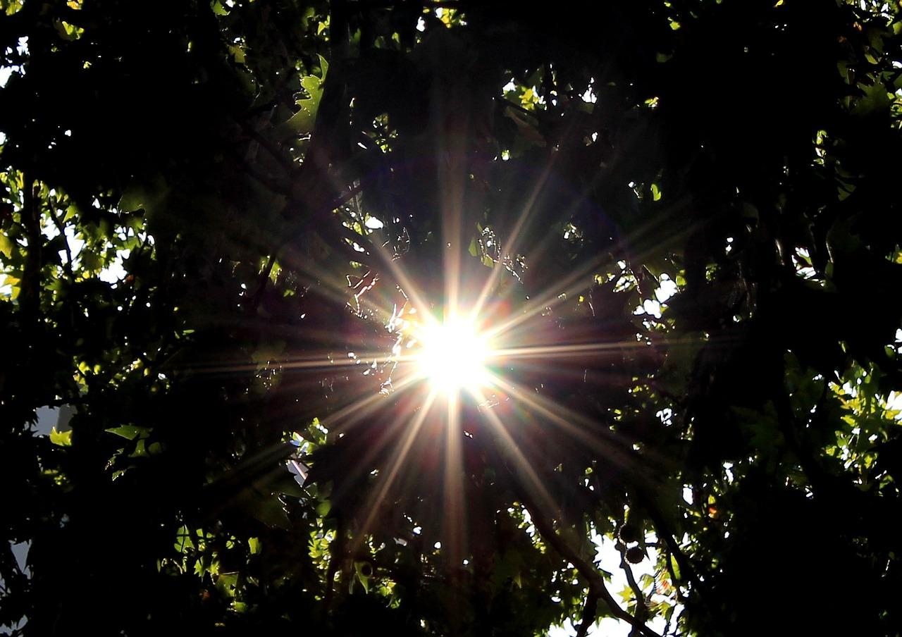 Картинки с лучами солнца, картинки тут