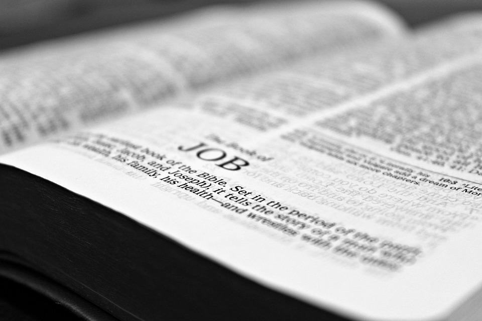 聖書, 仕事, 読書, キリスト教, 研究, 本, 読み取り, グレーの著書, グレーの図書, グレーの読み