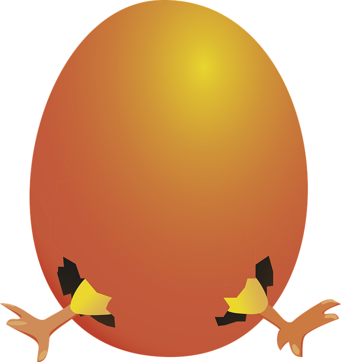 Курица с цыплятами картинки