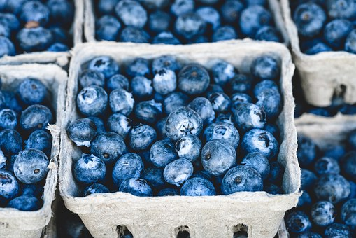 Blue Blueberry Delicious Fruit Food Desser