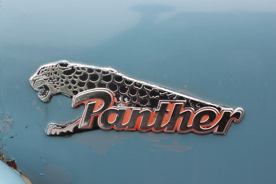panther logo free photo on pixabay